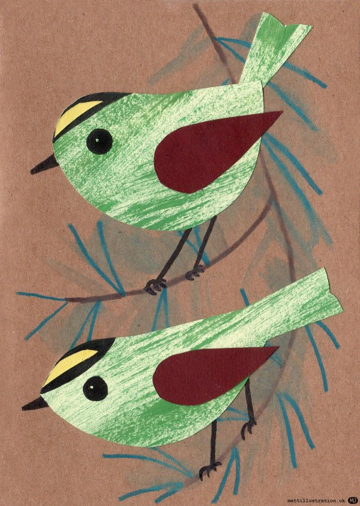 goldcrest bird illustration by Matt Johnson