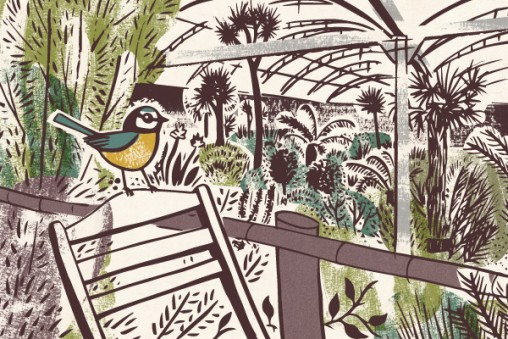 Illustration of blue tit in greenhouse at Trevenna Cross Nurseries