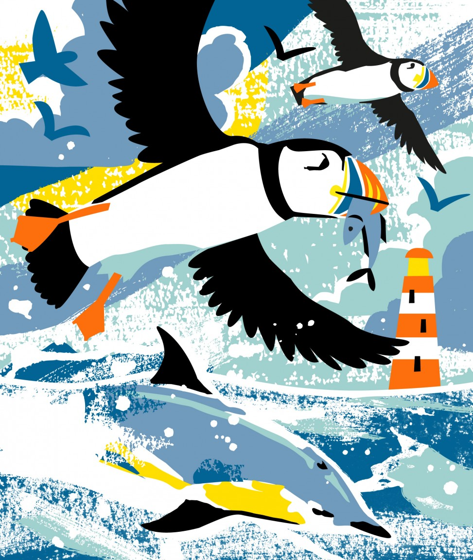 Puffins and Dolphins print by Matt Johnson for Seasalt