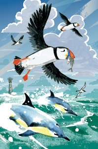 Puffins and dolphins illustration