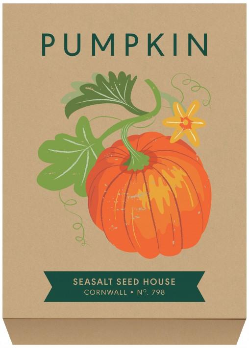 Pumpkin seed packet illustration by Matt Johnson