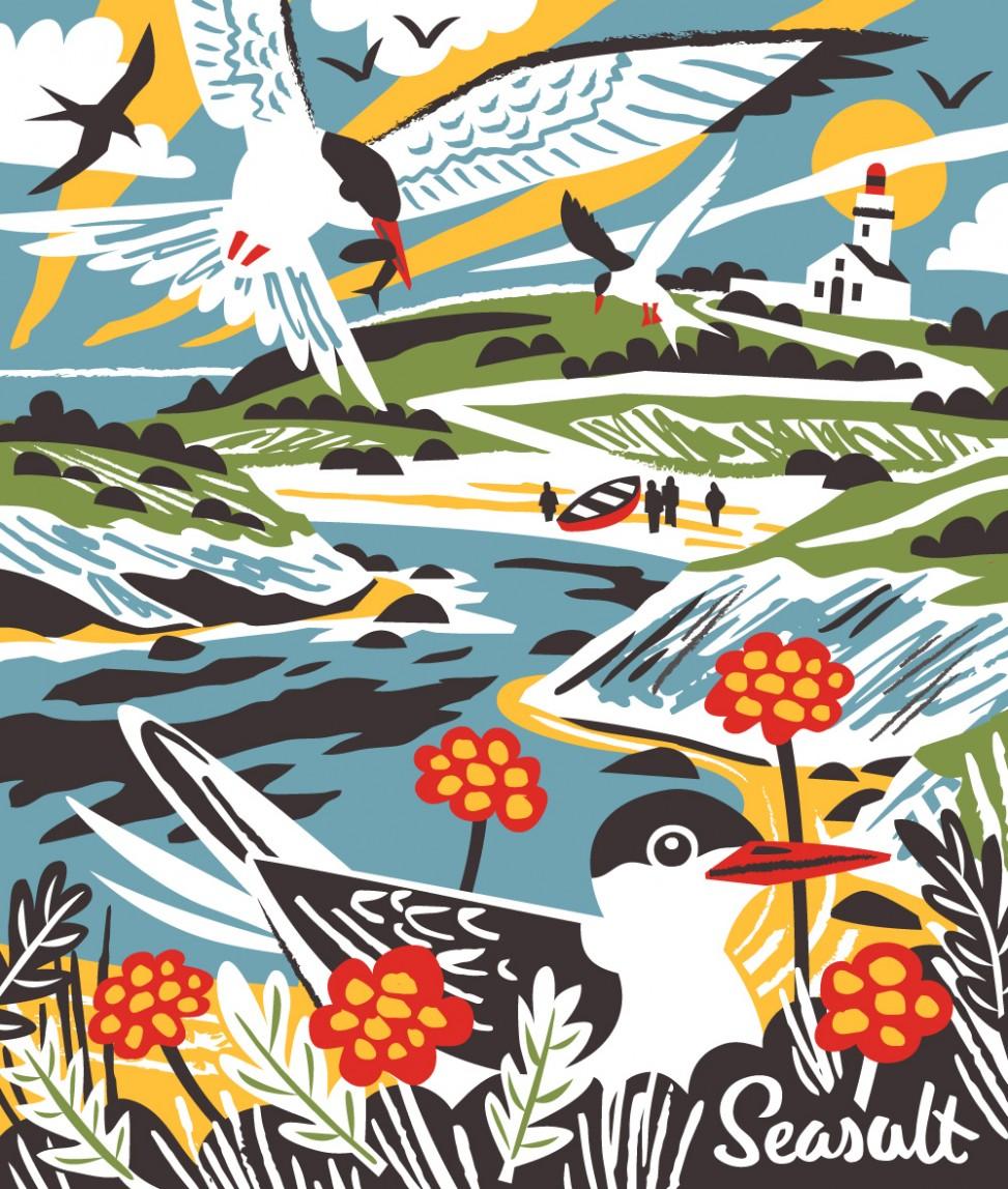 Belle Ile En Mer Terns print illustration by Matt Johnson for Seasalt Cornwall