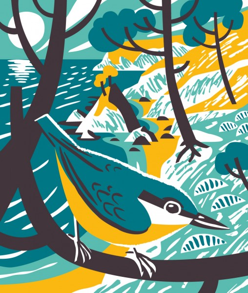 Nuthatch bird illustation by Matt Johnson for Seasalt Cornwall
