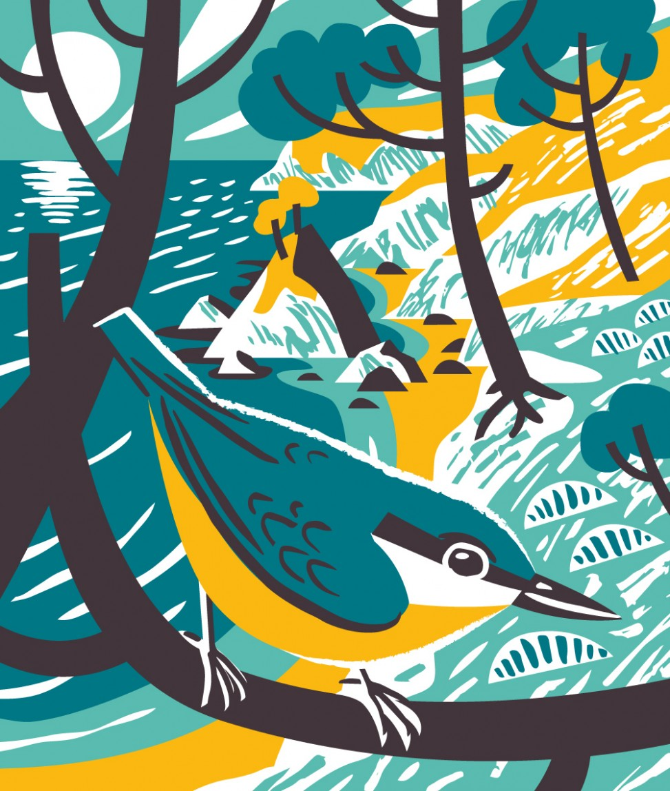 Nuthatch bird illustation by Matt Johnson for Seasalt Cornwall