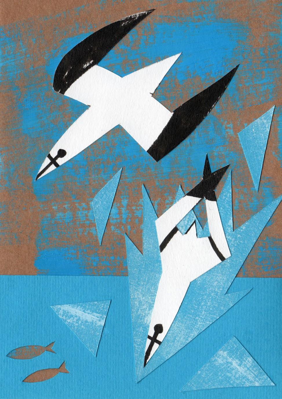Diving gannets illustration by Matt Johnson