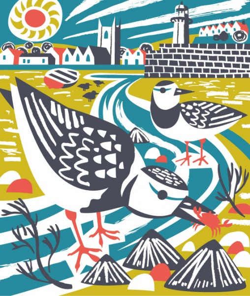 St Ives Turnstones illustration by Matt Johnson for Seasalt Cornwall