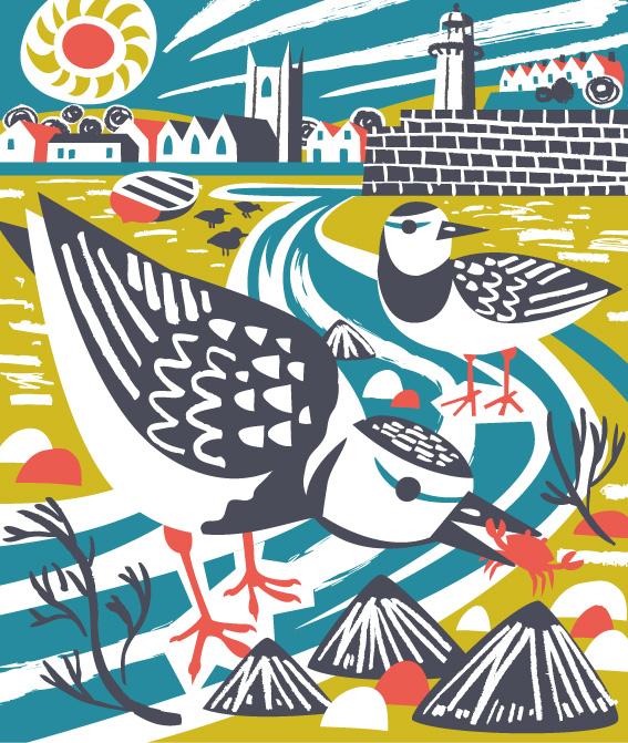 St Ives Turnstones illustration by Matt Johnson for Seasalt Cornwall
