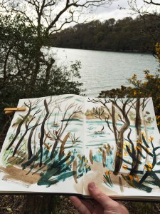 River Fal / Tolcarne woods / 7th Rise sketchbook by Matt Johnosn for Seasalt Cornwall