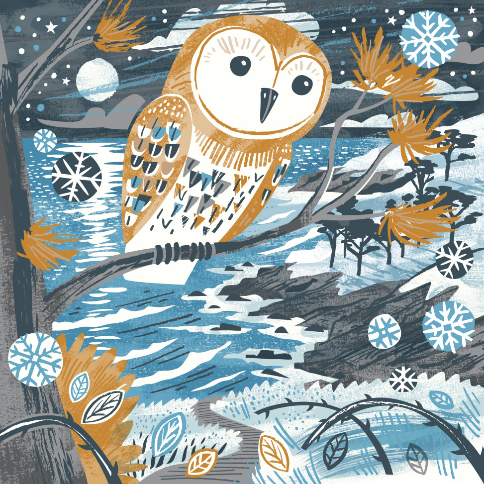 Owl Christmas card by Matt Johnson for Seasalt Cornwall