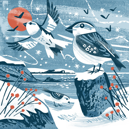 Snow buntings Christmas card by Matt Johnson for Seasalt Cornwall