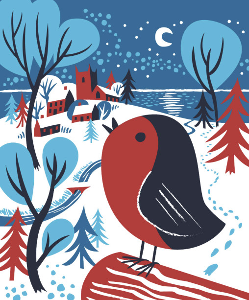 Christmas robin illustration by Matt Johnson for Seasalt Cornwall