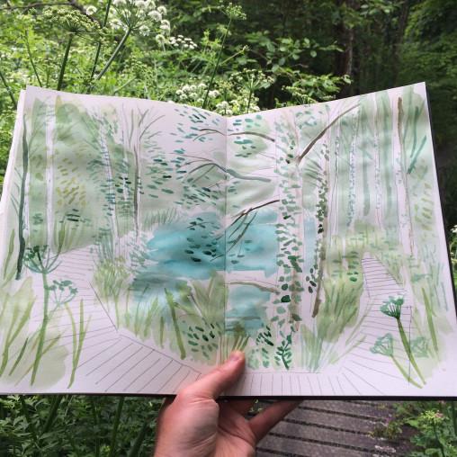 Tehidy Woods Sketchbook Matt Johnson
