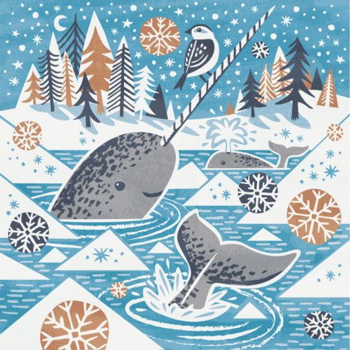 Narwhal and Snow bunting illustration by Matt Johnson