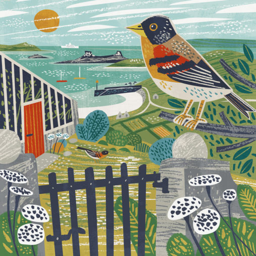Higher Town Brambling, St Martin's, Isles of Scilly greetings card - illustration by Matt Johnson for Seasalt Cornwall