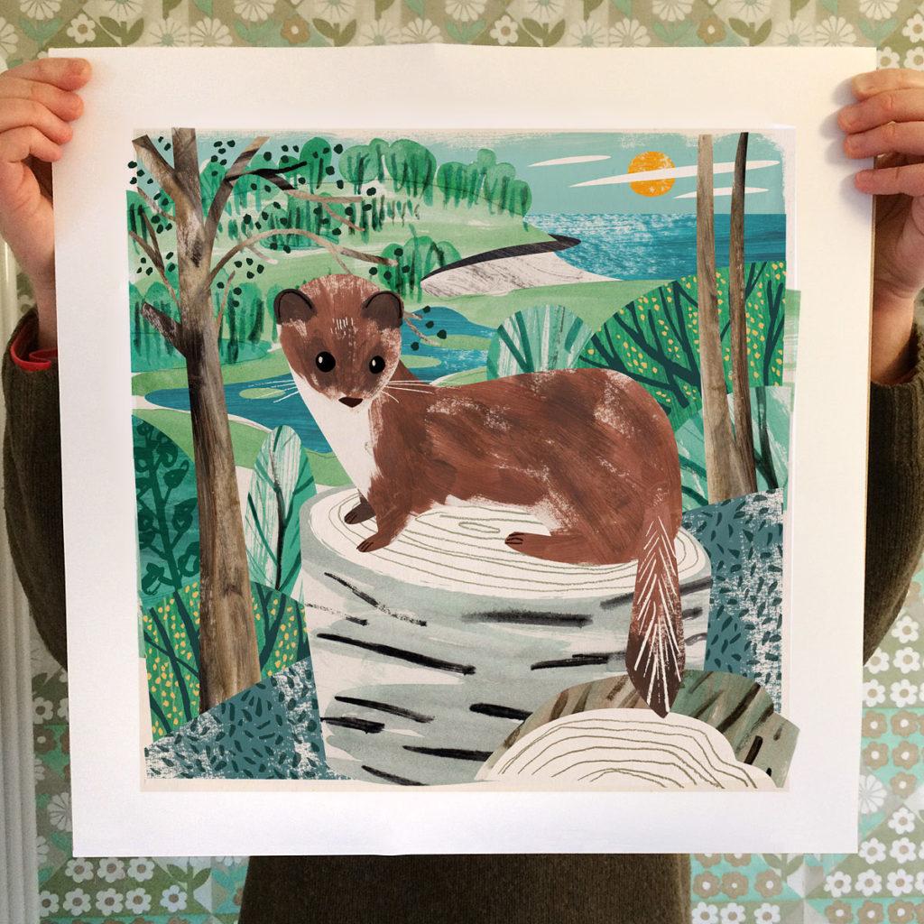 Stoat on tree stump in woods near Porthluney Cove. Collage illustration by Matt Johnson.