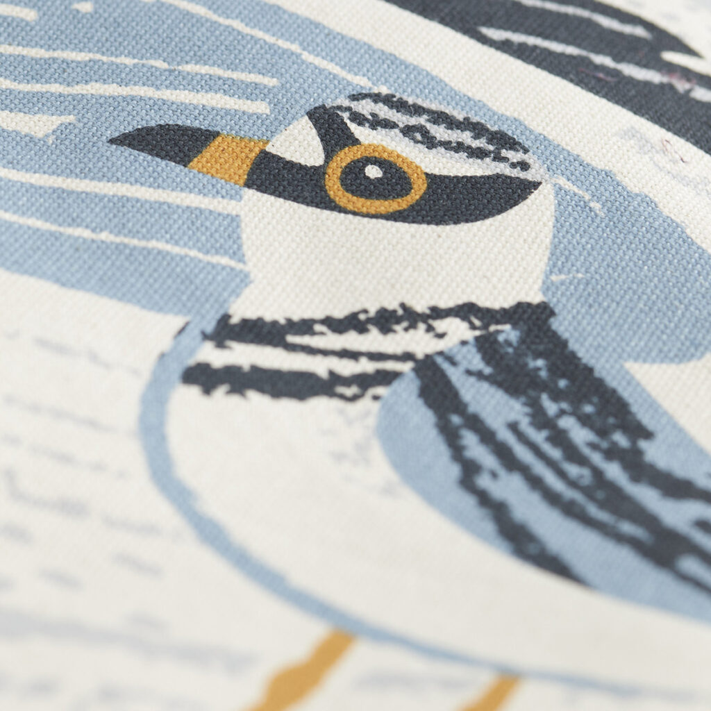 Little ringed plover bird print by Matt Johnson