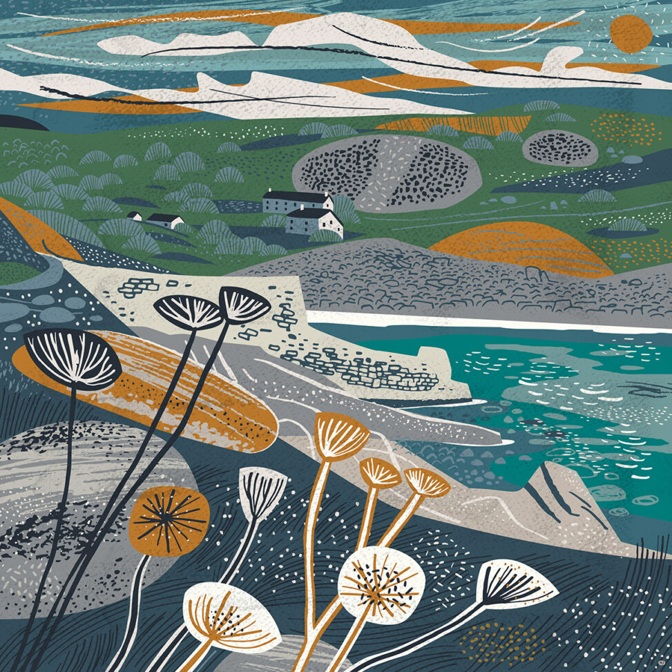 Lamorna Cove Seed Heads Illustration by Matt Johnson