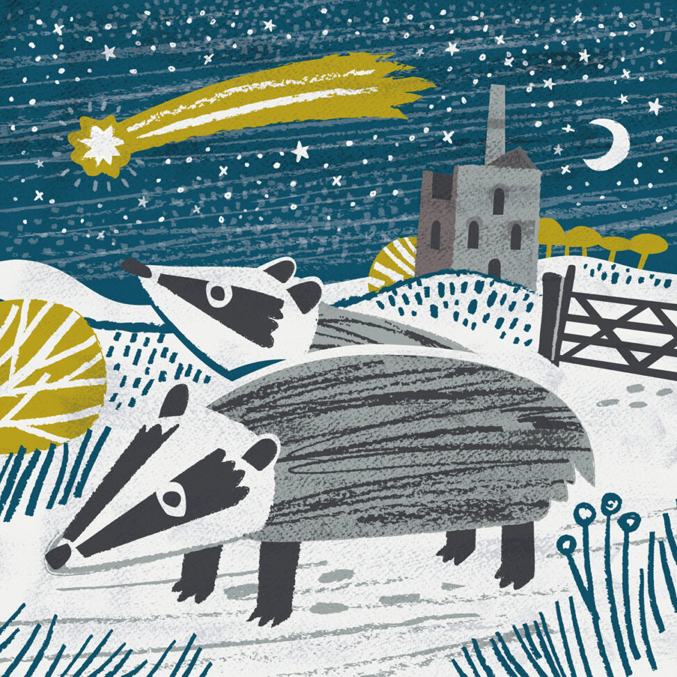 Badgers and comet Cornnish Christmas card by Matt Johnson
