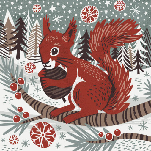 WInter Red Squirrel illustration by Matt Johnson